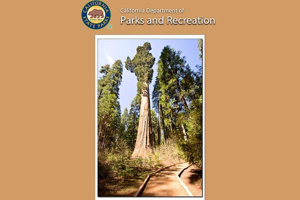 Big Trees California State Park