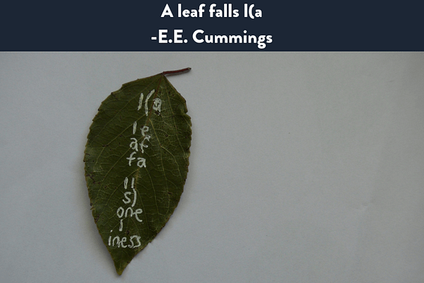 A leaf falls I(a on wikipedia