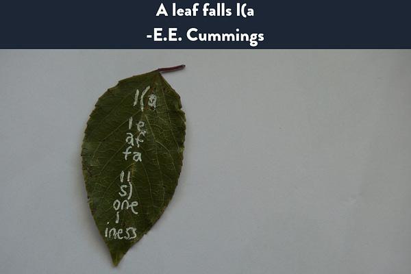 A leaf falls I(a on wikipedia