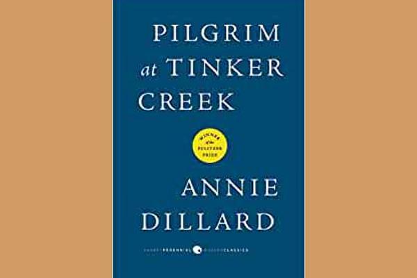 Pilgrim at Tinker Creek, by Anne Dillard