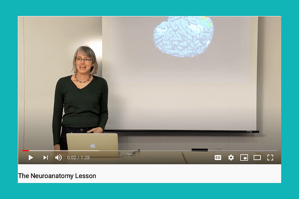 Nancy Kanwisher's Neuroanatomy Lesson