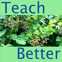 teachbetter