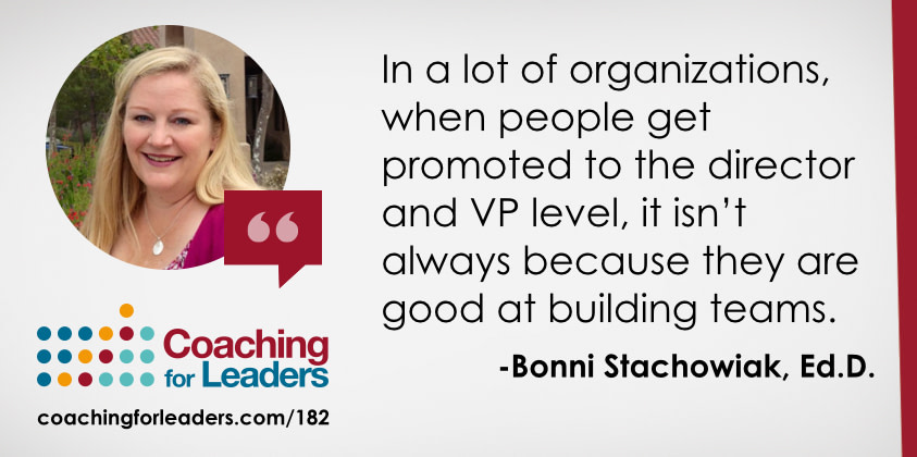 In a lot of organizations, when people get promoted to the director and VP level, it isn't always because they are good at building teams.